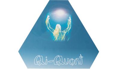 QiQuant Regenerationsplatte